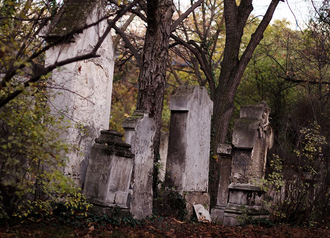 Friedhof St. Marx3 _ c sabine karrer