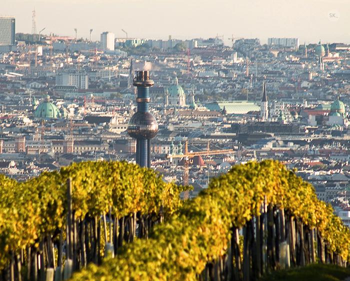 Kahlenberg, Spittelau, Wein, Wien