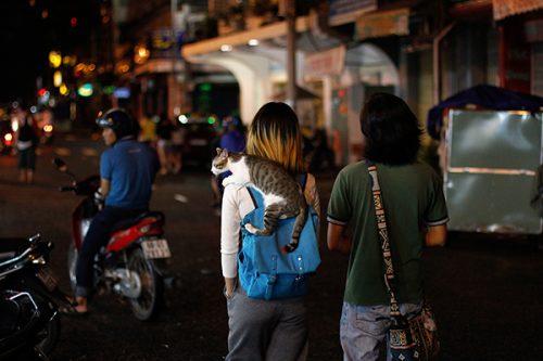 vietnam-1662_-c-sabine-karrer
